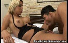 Bareback gayzinho brasileiro chupando transsexual e comendo cu